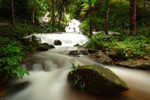 Teentok Royal - Les belles rivières